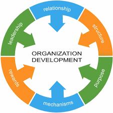 پرسشنامه استاندارد توسعه سازمانی