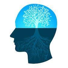 پرسشنامه استاندارد هوش عاطفی