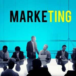 دانلود ترجمه مقاله ابعاد بازاریابی کارآفرینی و عملکرد SME ها