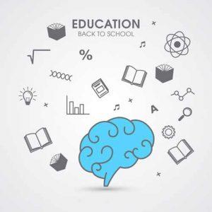 دانلود ترجمه مقاله درک سیاست سازمانی، مخفی سازی دانش و ابتکار کارکنان – الزویر ۲۰۱۹
