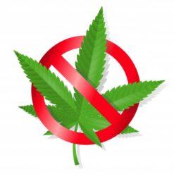 پرسشنامه باورهاي مرتبط با مصرف مواد مخدر( بك و رایت؛1993)