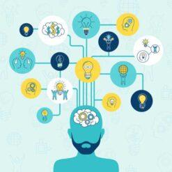 نوآوری، کارآفرینی، و عملکرد رستوران: یک مدل ساختاری مرتبه بالاتر