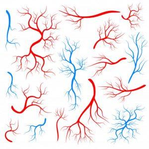 دانلود ترجمه مقاله مطالعات همخوانی سراسر ژنوم برای بیماری شریان کرونری – Oxford Journals 2018