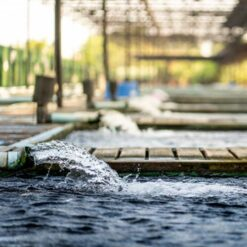 دانلود ترجمه مقاله مطالعات تخلیه آب زیرزمینی و تعادل آب زیرزمینی حوزه آبخیز رودخانه کانادیلاوس – الزویر ۲۰۱۸