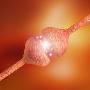 دانلود ترجمه مقاله پیش بینی کنترل بیماری صرع در دوران حاملگی – الزویر ۲۰۱۸