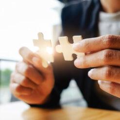دانلود ترجمه مقاله آیا سازمان شما به ایجاد پیوسته ارزش اجتماعی کمک می کند؟ – الزویر ۲۰۱۷